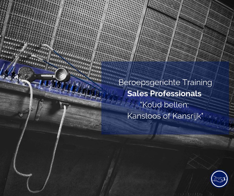 Beroepsgerichte Training Sales Professionals